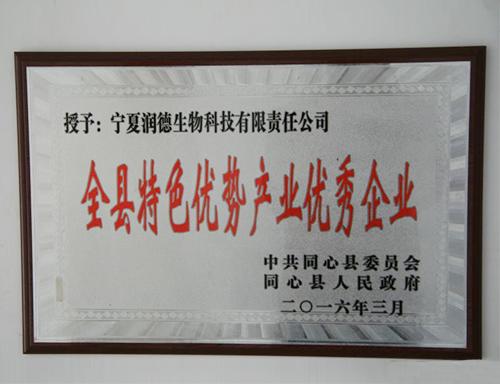 """荣获""""同心县特色优势产业优秀企业"""""""