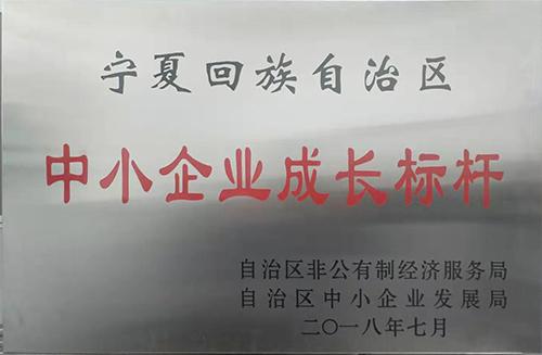 宁夏回族自治区中小企业成长标杆--区级