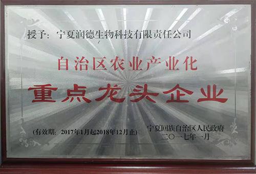 自治区农业产业化重点龙头企业-区级